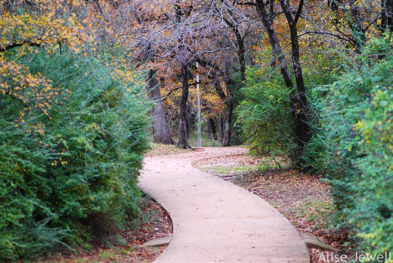 Veterans Park Path