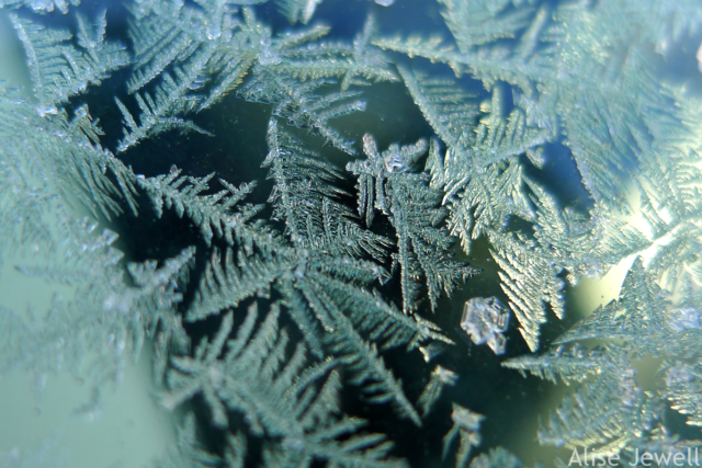 frost crystals on windshield